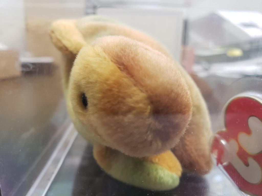 Steg Beanie Baby from the Front